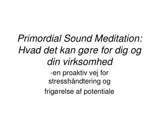Primordial Sound Meditation: Hvad det kan g re for dig og din virksomhed