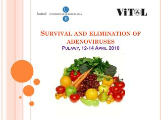 Survival  and  elimination  of  adenoviruses Pulawy , 12-14  April  2010