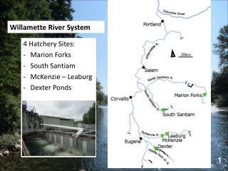 Willamette River System