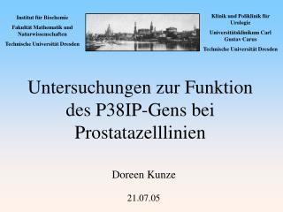 Untersuchungen zur Funktion  des P38IP-Gens bei Prostatazelllinien