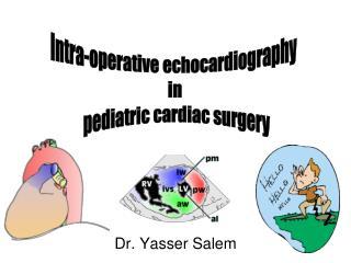Dr. Yasser Salem