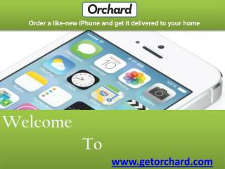 Orchard Iphone