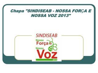 """Chapa """"SINDISEAB - NOSSA FOR Ç A E NOSSA VOZ 2013"""""""