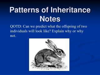 Patterns of Inheritance Notes