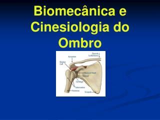 Biomecânica e Cinesiologia do Ombro