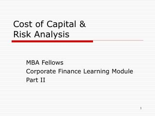Cost of Capital &  Risk Analysis