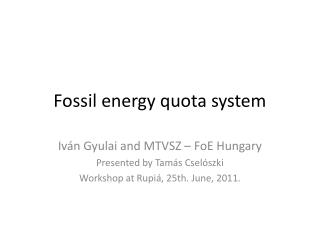 Fossil energy quota system