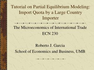 Tutorial on Partial Equilibrium Modeling: Import Quota by a Large Country Importer