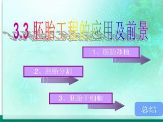 3.3  胚胎工程的应用及前景