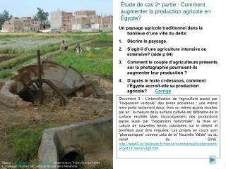 Étude de cas 2 e  partie : Comment augmenter la production agricole en Égypte?
