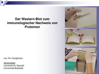 Der Western-Blot zum immunologischer Nachweis von Proteinen