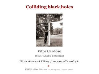EMMI - Hot Matter    24-28 Aug 2010 | Vienna, Austria