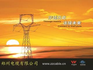 郑州电缆有限公司