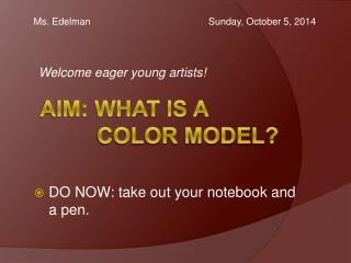 AIM: what is a color model?
