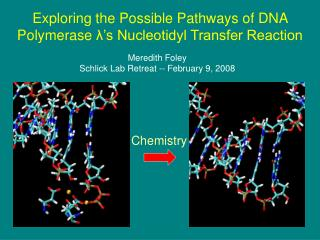 Exploring the Possible Pathways of DNA Polymerase  λ 's Nucleotidyl Transfer Reaction