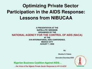 Optimizing Private Sector Participation in the AIDS Response: Lessons from NIBUCAA