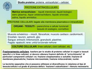 ORGANI - TESSUTI  – parenchima e cellule funzionali         tessuto di sostegno, connettivo