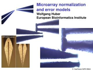 Microarray normalization and error models Wolfgang Huber European Bioinformatics Institute