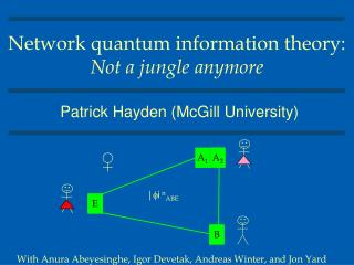 Network quantum information theory: Not a jungle anymore