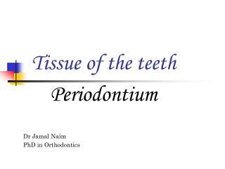 Tissue of the teeth