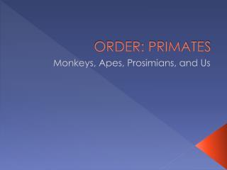 ORDER: PRIMATES