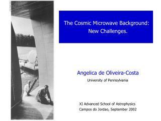 Angelica de Oliveira-Costa