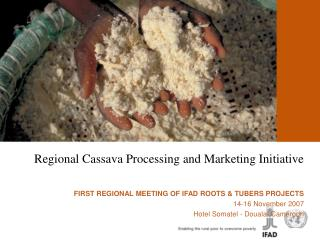 Regional Cassava Processing and Marketing Initiative     FIRST REGIONAL MEETING OF IFAD ROOTS  TUBERS PROJECTS 14-16 Nov