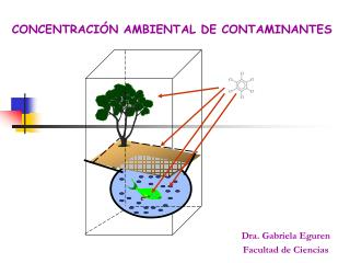 CONCENTRACIÓN AMBIENTAL DE CONTAMINANTES