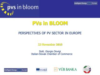 PVs in BLOOM PERSPECTIVES OF PV SECTOR IN EUROPE 23 November 2010
