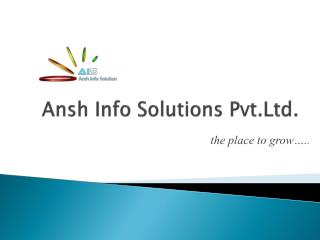 Ansh Info Solutions  Pvt.Ltd .