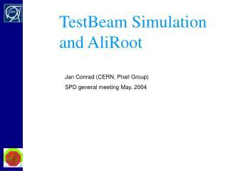 Test Beam 2002