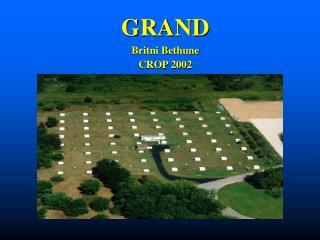 GRAND Britni Bethune CROP 2002