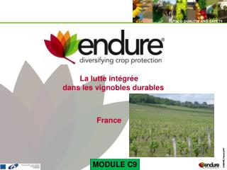 La lutte intégrée dans les vignobles durables France