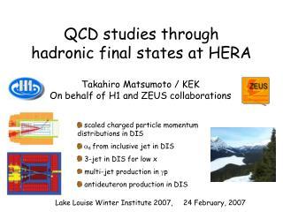 QCD studies through             hadronic final states at HERA