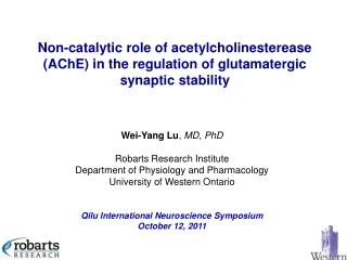 Wei-Yang Lu ,  MD, PhD Robarts Research Institute Department of Physiology and Pharmacology