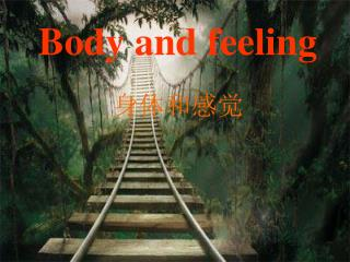 Body and feeling