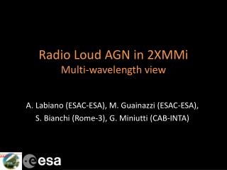 Radio Loud AGN in 2XMMi Multi-wavelength view