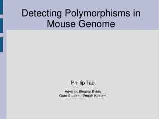 Detecting Polymorphisms in Mouse Genome