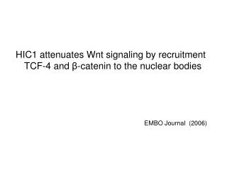 HIC1 attenuates Wnt signaling by recruitment TCF-4 and  β -catenin to the nuclear bodies