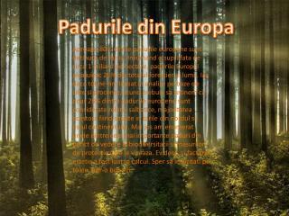 Padurile  din Europa