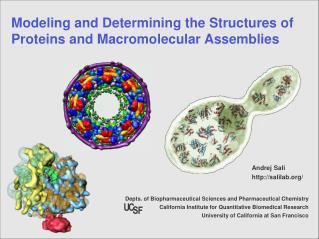 Modeling and Determining the Structures of Proteins and Macromolecular Assemblies