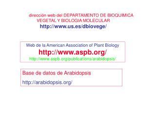 dirección web del DEPARTAMENTO DE BIOQUIMICA VEGETAL Y BIOLOGIA MOLECULAR