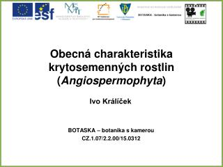 Obecná charakteristika krytosemenných rostlin ( Angiospermophyta )