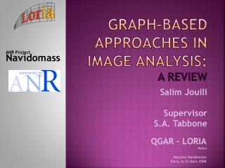 Graph-based approaches in image analysis:  a review
