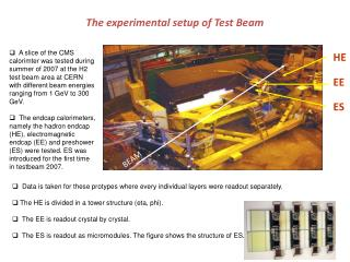 The experimental setup of Test Beam