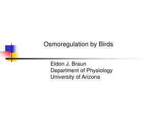 Osmoregulation by Birds