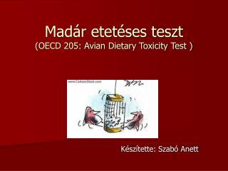 Madár etetéses teszt (OECD 205: Avian Dietary Toxicity Test )