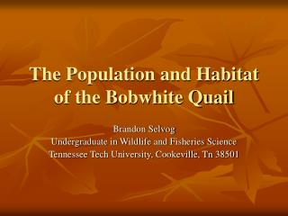 The Population and Habitat of the Bobwhite Quail