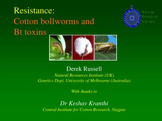 Resistance: Cotton bollworms and  Bt toxins
