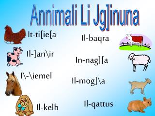 Annimali Li Jg]inuna
